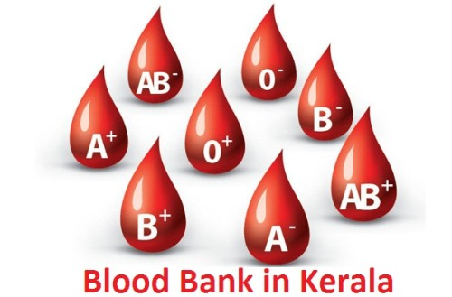 blood-bank-in-kerala
