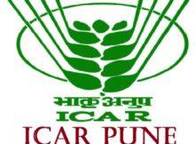 ICAR Pune